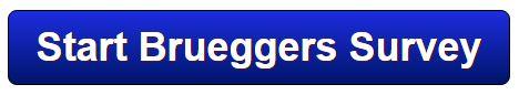 Bruegger's Bagels Survey